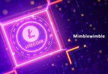 Litecoin Mimblewimble Testnet on Track to September Launch