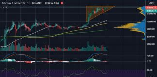 Bitcoin (BTC) has a 30% Chance of Hitting $17k by EOY - Crypto Analyst 16