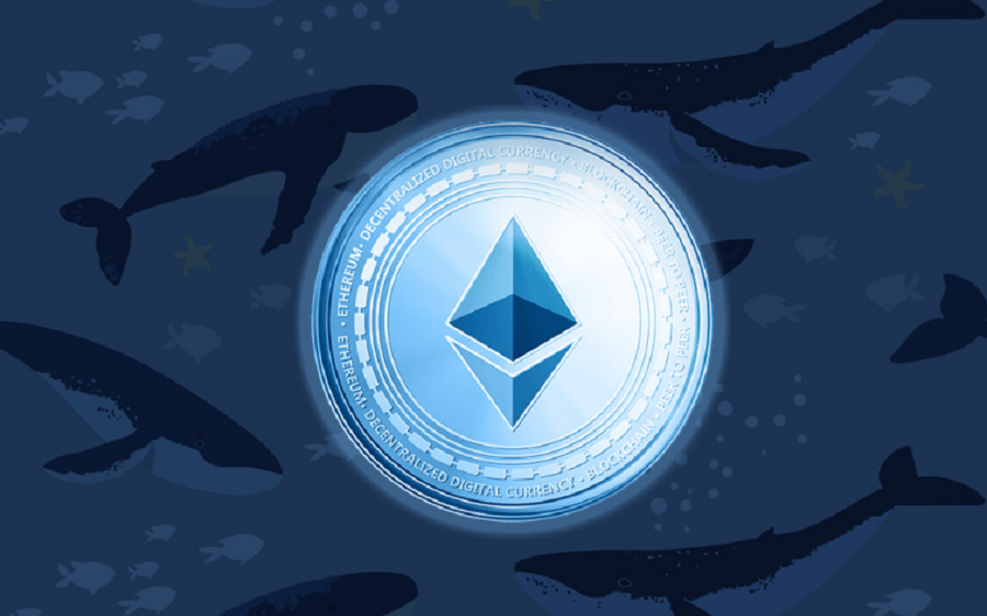 Two Ethereum Whales move 53,455 ETH, as DeFi tokens gain popularity