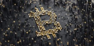 Data obtained from thecrypto analytics firm says that, the number of Bitcoin addresses having at least 0.1 BTC has risen by 14% over the past one year, Did Satoshi Nakamoto cause the panic sell-off in Bitcoin market, Bitcoin hits $8,826, Pigs hit hard at BTC market, plunges 8%