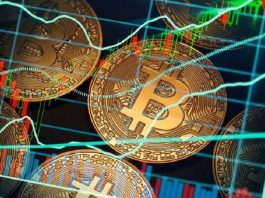 Big mistake: Ripple's CTO sold his Bitcoin for $750, Best time to cash in on Bitcoin