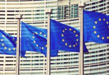 Esma queries use of blockchain for EC's ambitious financial data platform
