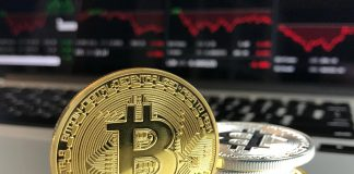 Bitcoin Cryptocurrency Market