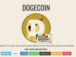 A screengrab from the dogecoin.com website. One of the Dogecoin founders told a cryptocurrency news site that the token's rise makes him worry about market excess.