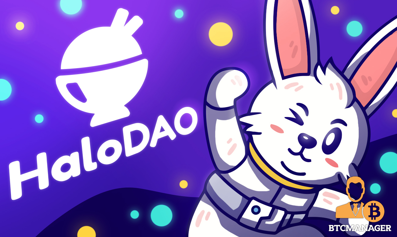 HaloDAO Raises $3.5M Seed For Stablecoin Marketplace Protocol Targeting Crypto's Largest Market Opportunity