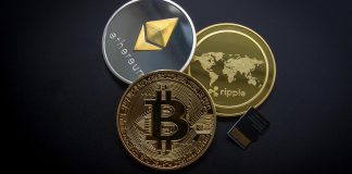 New Dog On The Block? This Altcoin Is Outperforming Dogecoin, Ethereum, Bitcoin