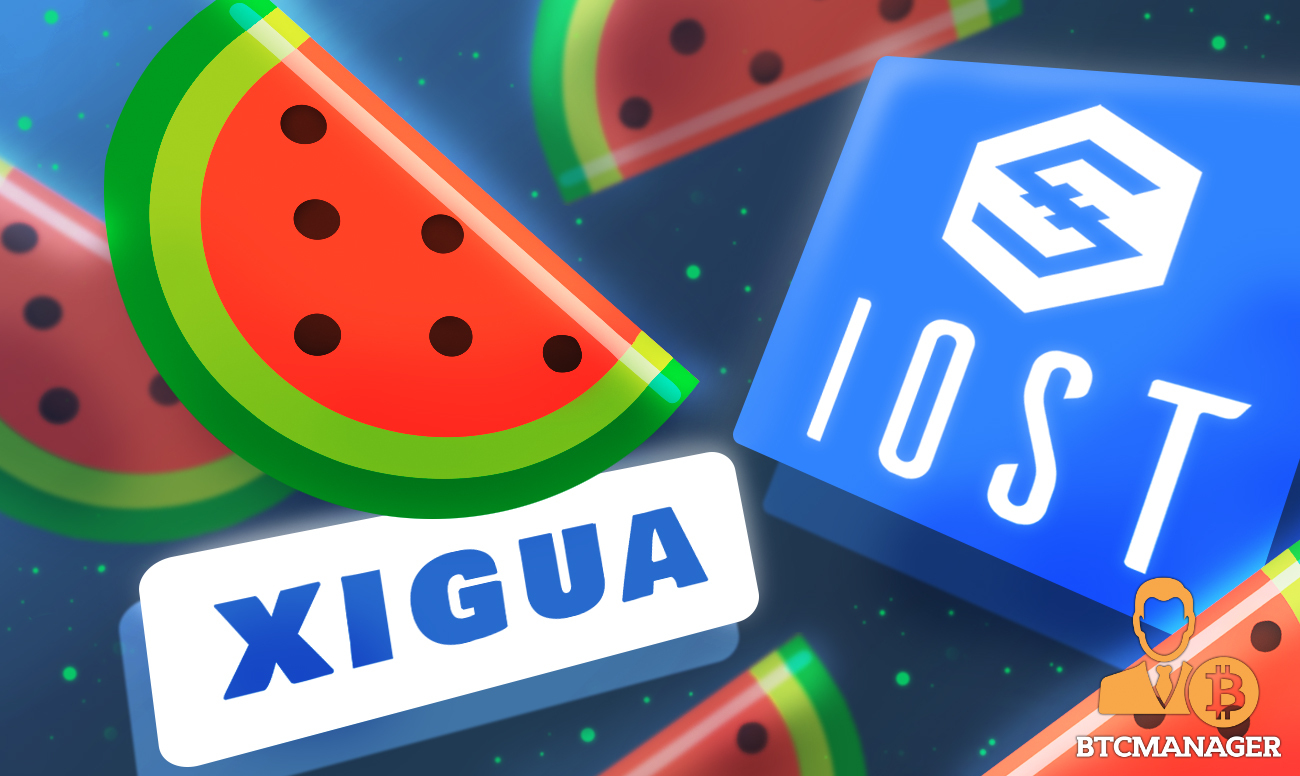 IOST-based Xigua Finance to Launch Multi-Chain IDO Platform XPlus