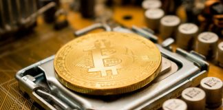BlackRock CIO On Bitcoin: I Like Volatile Assets With Upside Convexity