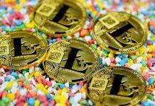 Forget Cardano, Bitcoin Cash, Dogecoin: Litecoin Activity Surpasses Them All